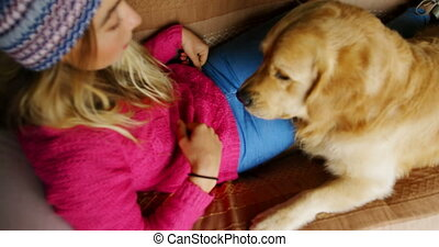 Woman feeding her dog on sofa at home 4k - Overhead of woman...