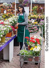 Woman filling the trolley with plants in the garden center -...