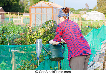 Woman filling up a watering can
