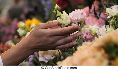 Woman florist hand gently touching flowers in shop - Closeup...