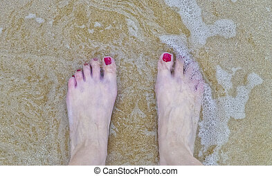 Woman Foot in the Beach