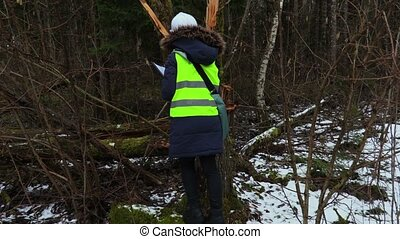Woman forestry employee checking broken trees