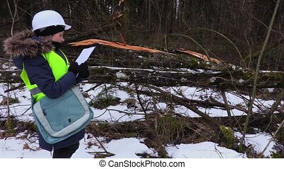 Woman forestry employee inspecting destroyed forest