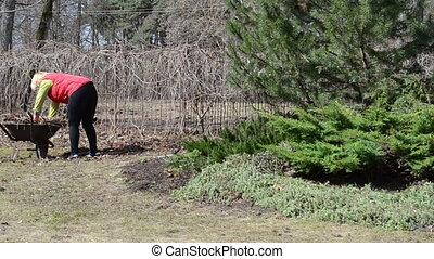 woman garden work barrow