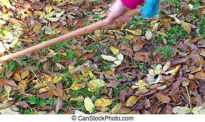 Woman gardener cleans the garden