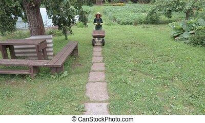 Woman gardener pushed a wheelbarrow