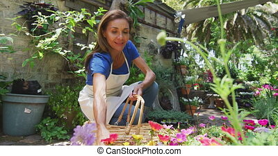 Woman gardening in nature - Front view of a Caucasian woman ...