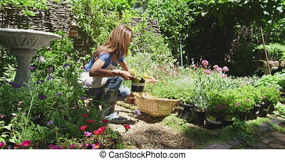 Woman gardening in nature - Side view of a Caucasian woman ...