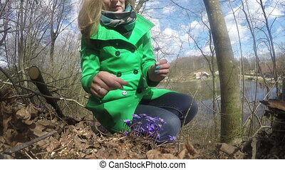 woman gather hepatica - young smiling woman gather first...