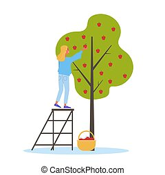 Woman gathering apple from the tree. Girl standing