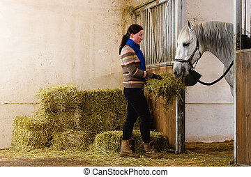 Woman give a hay for a horse