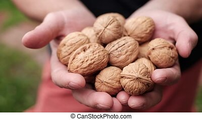 Woman giving walnut to her friend. Element of right diet