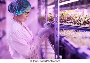 Woman growing radish