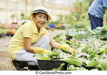 Woman growing water lil