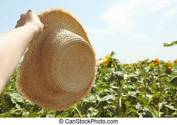 Woman hand hold straw hat in sunflower field. Agriculture