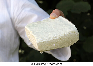 woman hand holding block of sheep cheese