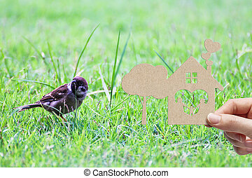 Woman hand holding brown paper cut home sweet home and tree shape on green grass