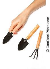 woman hand holding little garden tool