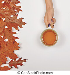 Woman hand holding perfect cup of tea on white background with autumn leaves - Flat lay of Autumnal background