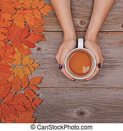 Woman hand holding perfect cup of tea on wooden table with autumn leaves - Flat lay of Autumnal background