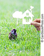 Woman hand holding white paper cut home sweet home and tree shape on green grass