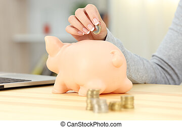 Woman hand putting a coin into a piggy bank - Close up of a...
