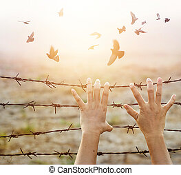Woman hands hold the bare wire with hope longing for freedom...