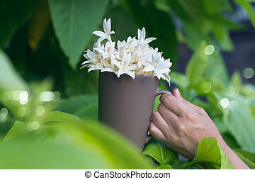 Woman hands holding white flower in cup on green nature background, Filter image