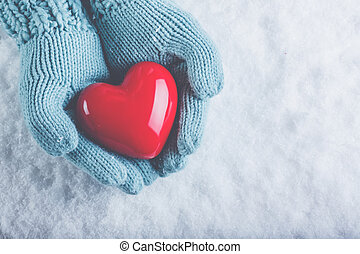Woman hands in light teal knitted mittens are holding...