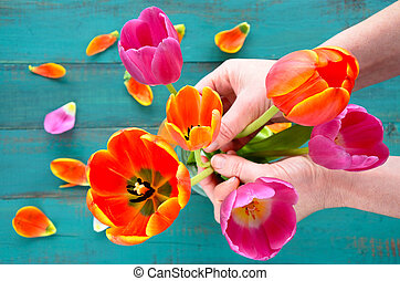 Woman hands organizing and assorting Tulip flowers bouque -...