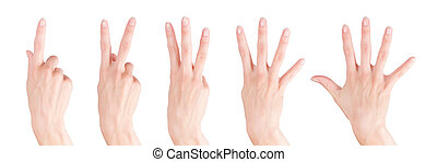 Woman hands set showing numbers from one to five