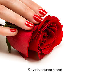 Woman hands with manicure red nails closeup and rose. Skin...