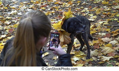 woman having fun making picture of her dog in autumn park