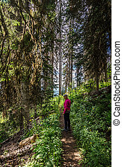 Woman Hiking through the Forest