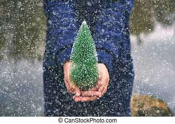 Woman holding a christmas tree in the forest, winter snow day