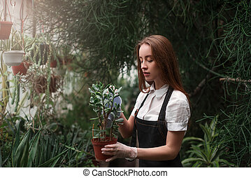 Woman holding a pot with houseplant in hands