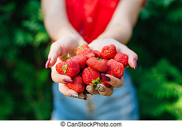 Woman holding fresh juicy red strawberries in hands