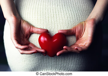 Woman holding heart - object red heart-shaped hands holding...