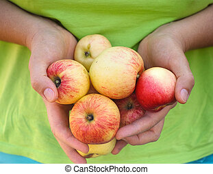 Woman holding organic apples in her hands