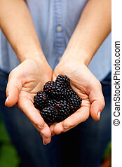 Woman holding ripe blackberries