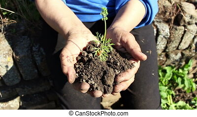 Woman holding small carrot and dirt in hands