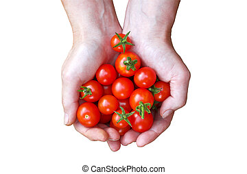 Woman holding tomatoes in hands