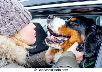 Woman hugging her dog. A close up portrait of purebred Bernese Mountain Dog puppy.