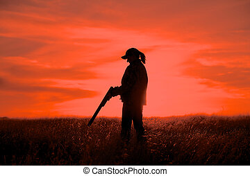 Woman Hunter in Sunset - a woman upland game hunter with...