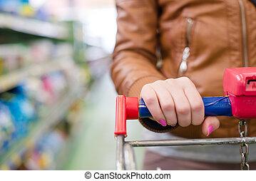 woman in a supermarket trolley