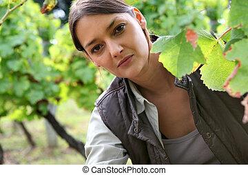 Woman in a vineyard