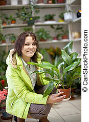 woman in flower shop - Woman chooses aspidistra flower in a...