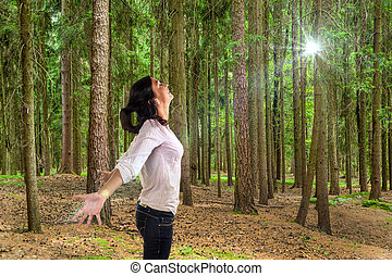woman in forest - many trees in a forest with a woman who ...