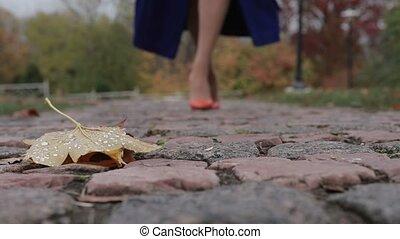 Woman in high heels walking on street in autumn - Elegant...