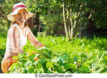 woman  in plant of pea